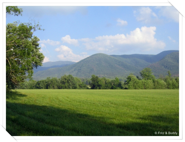 1 17 Cades Cove, Great Smoky Mountains